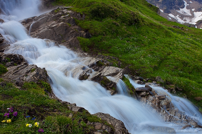 meadow, falls, alpes, mountain, hohe tauern, national park, austria, photo