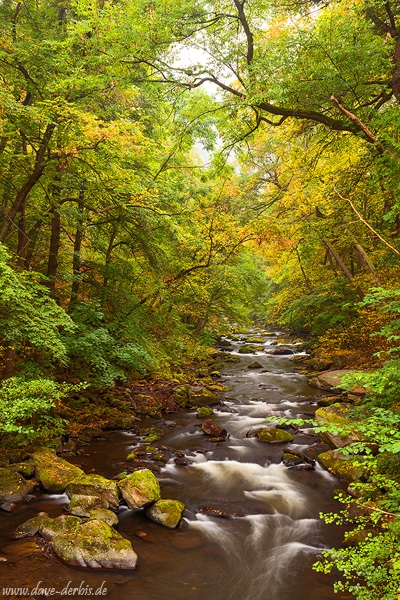 harz, autumn, stream, cascase, river, foliage, bode, bodetal, germany, 2016, photo