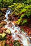 harz, forest, autumn, fall, creek, cascade, stream, waterfall, mountains, germany, 2020, photo