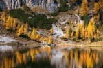 lake, reflection, autumn, fall, trees, mountains, alpes, dolomites, italy, 2015, Italy, photo