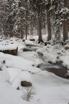 harz, winter, bode, snow, cascade, river, fir tree, germany, 2009, Stock Images Germany, photo