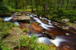 harz, bode, river, forest, cascade, summer, wallpaper, germany, 2010