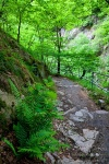 hiking, harz, bode, bodetal, thale, trail, tour, 2012, photo