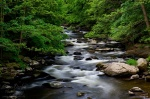 bode, bodetal, thale, sommer, river, harz, germany, 2011, Wandern im Harz, photo