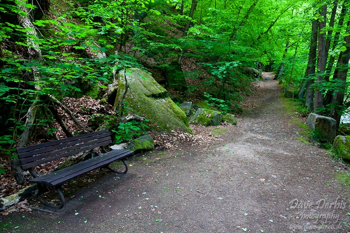 bode, harz, hiking, thale, summer, valley, germany, 2011, photo