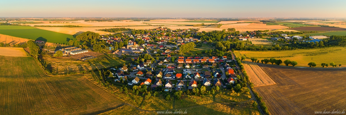 aerial, drone, brumby, sunset, golden hour, summer, from above, germany, 2019, photo