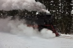 harz, steam, train, snow, winter, germany, 2013, photo
