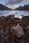 beach, sunset, arctic, ocean, stream, mountain, lofoten, norway, photo