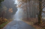 roadshot, fog, road, autumn, tree, woods, forest, germany, 2012, Rural Germany, photo