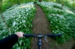 bike, forest, summer, racing, selfie, 2011, germany, photo
