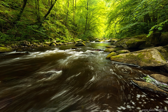 harz, summer, cascade, forest, stream, harz, germany, 2019, photo