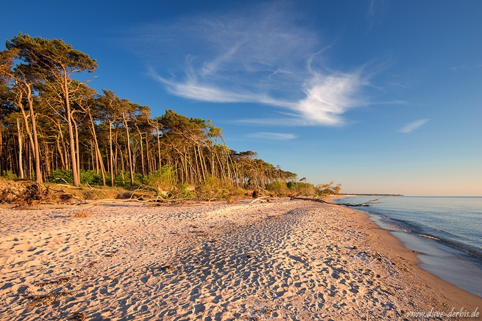 sunset, beach, coast, baltic sea, golden hour, germany, weststrand, 2016, photo