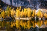 lake, reflection, autumn, fall, trees, mountains, alpes, dolomites, italy, 2015, latest, Personal Favorites, photo