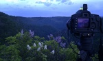 greetings, harz, sunset, thale, camera, photo