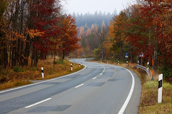 autumn, harz, foliage, street, roadshot, braunlage, harz, germany, 2012, photo