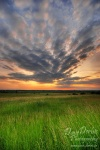 field, sunset, grass, brumby, amazing, striking, light, soft,  clouds, sky, germany, photo