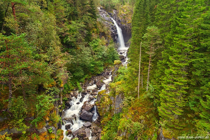 waterfall, canyon, river, cascade, forest, norway, 2019, photo