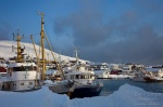 norway, harbour, boat, winter, photo