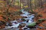autumn, stream, cascade, forest, foliage, river, harz, germany, 2013, photo