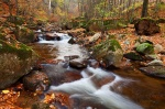harz, autumn, valley, ilse, cascade, stream, river, forest, ilsetal, ilsenburg, germany, 2013, photo
