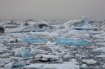 glacier, ice, bay, ocean, shore, jokulsarlon, iceland, photo