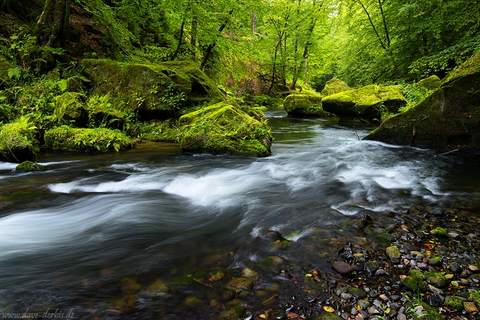 latest, kamenice, bohemian switzerland, national park, river, stream, summer, forest, czech republic, 2015, photo