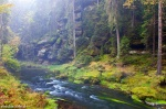 forest, valley, river, autumn, kamnitz, bohemian-switzerland, czech republic, 2014, photo