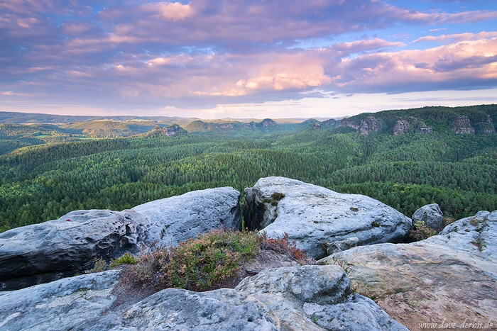 forest, sunset, mountains, view, summer, zschand, saxon switzerland, germany, 2015, photo
