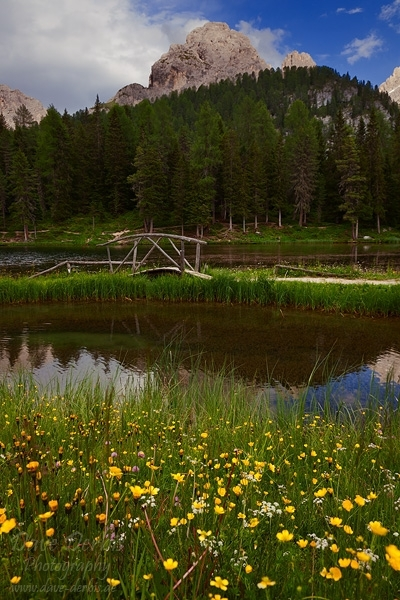 lake, dolomites, mountains, meadows, reflection, wildflowers, rugged, italy, 2011, photo