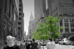 manhattan, skyscrapers, downtown, usa, new york city, new york, nyc, life, green, NYC Street, photo