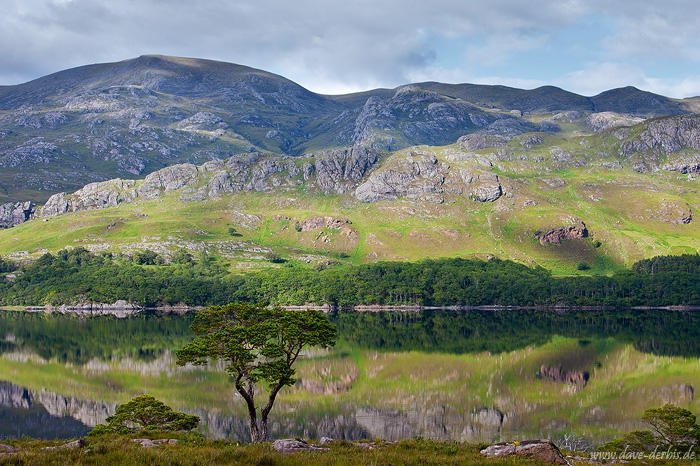 loch, lake, highlands, mountain, reflection, tree, scotland, 2014, photo