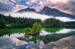sunrise, forest, lake, mountains, reflection, fog, alps, germany, 2020, Germany, photo