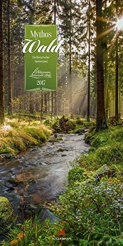 calendar, kalender, cover, wald, september, germany, 2017, photo