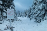 hiking, winter, snow, harz, sign, human, tree, fir, germany, 2013, photo