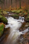 harz, ilse, autumn, stream, ilsetal, sachsen-anhalt, ilsenburg, herbst, creek, germany, photo
