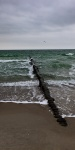 beach, storm, baltic sea, buhne, germany, photo