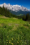 mountain, meadow, summer, hiking, dolomites, italy, 2011, Italy, photo