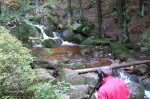 hiking, phototours, tours, national park, harz, europe, berge, mountain, sachsen-anhalt, eckerlochstieg, schirke, photo