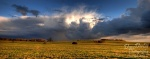 brumby, grassland, cloudburst, storm, brumby, radiance, storm, sky, glanz, wolkenbruch, sturm, himmel, dramatic, sonnenuntergang, sunset, germany, Stock Images Germany, photo