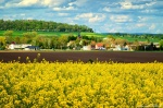 rural, scene, country, natural, hinterland, germany, 2020, photo