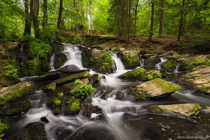 harz, summer, waterfall, cascade, forest, stream, harz, germany, 2019, photo