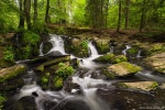 harz, summer, waterfall, cascade, forest, stream, harz, germany, 2019, Germany, photo