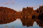 harz, lake, autumn, sunset, tree, forest, germany, 2012, Autumn Season 2012, photo