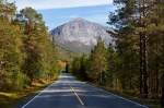roadshot, road, forest, mountain, northern, norway, 2013, photo