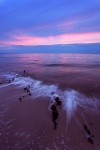 sunset, baltic sea, beach, twilight, nationalpark, vorpommersche, boddenlandschaft, germany, photo