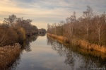 sunday, golden hour, river, walk, elster, leipzig, 2020, Germany, photo