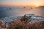 sunrise, valley, mountain, sun, saxon switzerland, germany, latest, photo