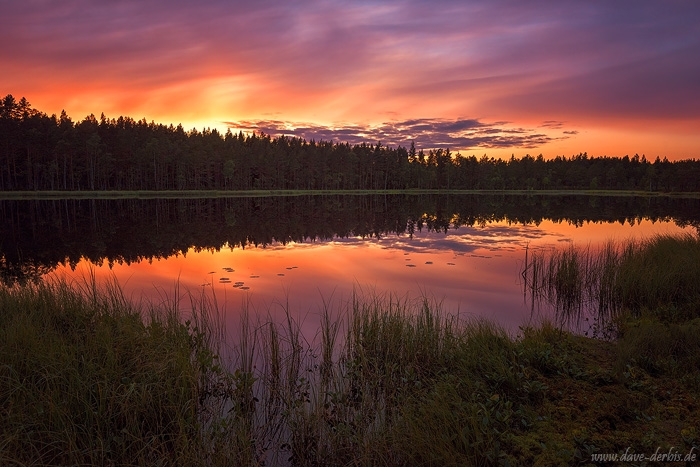 sunset, lake, reflection, forest, summer, calm, mirror, norway, 2017, photo