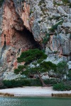 torrent, tree, beach, coast, lagoon, mallorca, spain, 2011, photo