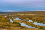 river, tundra, autumn, farm, sunset, iceland, 2016, photo